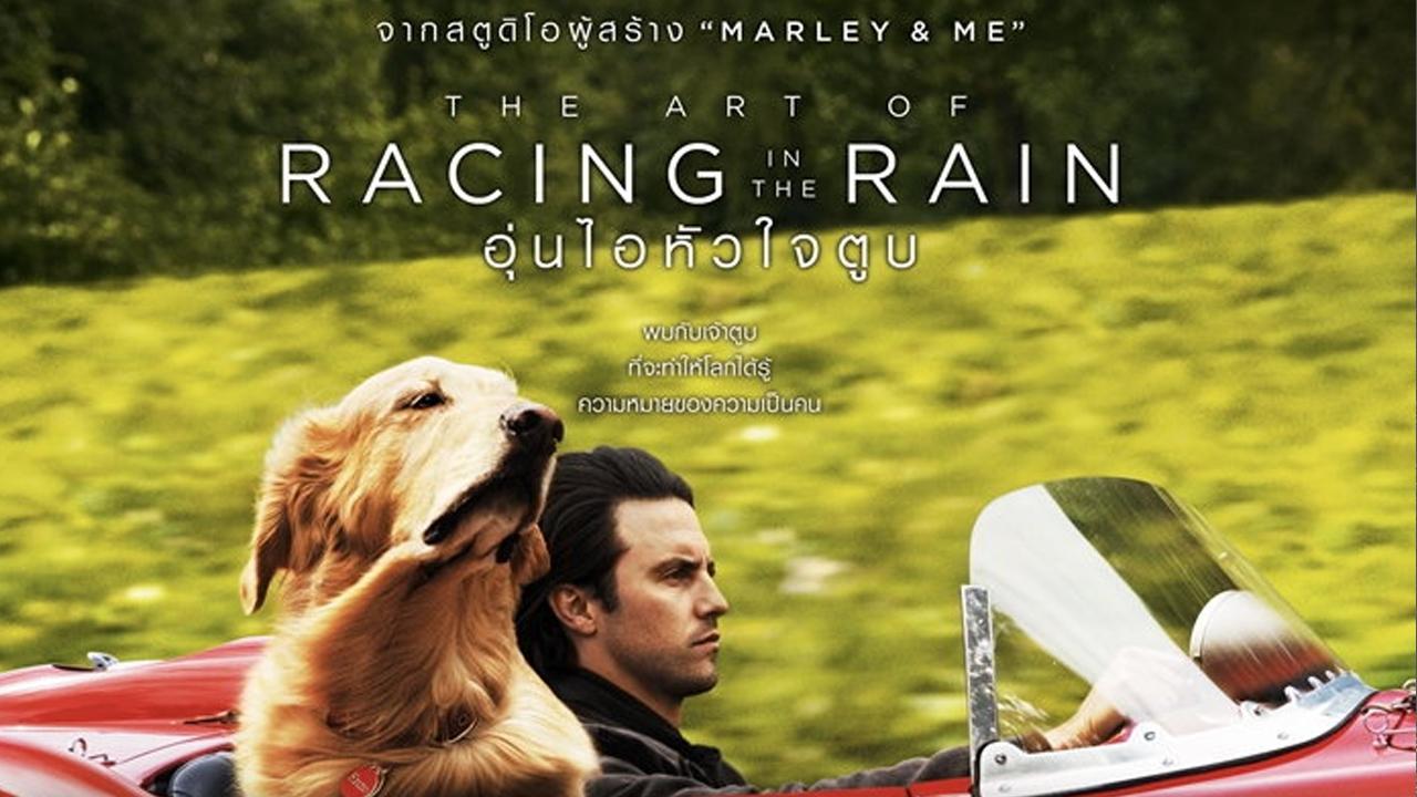 ภาพยนตร์ The Art of Racing in the Rain (2019) อุ่นไอหัวใจตูบ